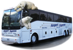 Polar Bears on an Sonoma County Airport Express bus